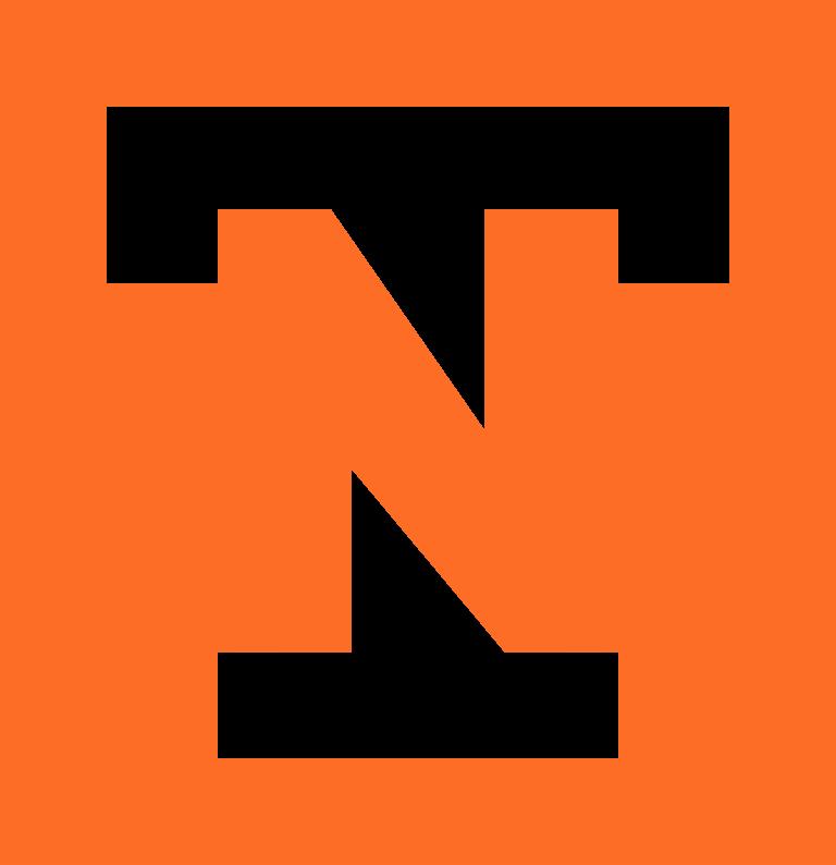 Tek Ninjas Solutions LLC